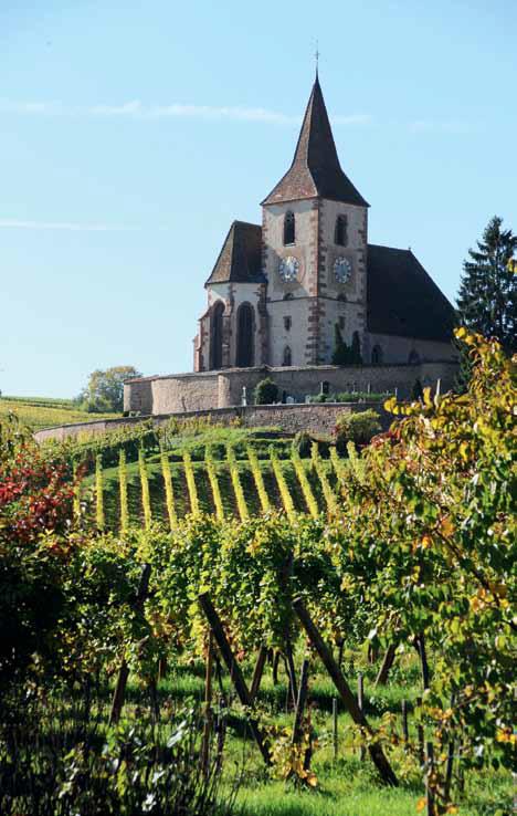 domaine-trimbach-castle